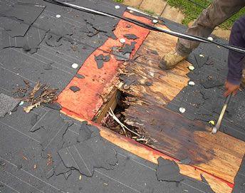 shingle roof repair naples shingle restoration ft myers. Black Bedroom Furniture Sets. Home Design Ideas