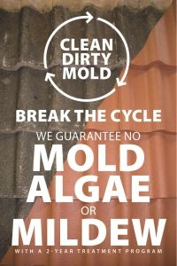 Clean-Dirty-Mold-01