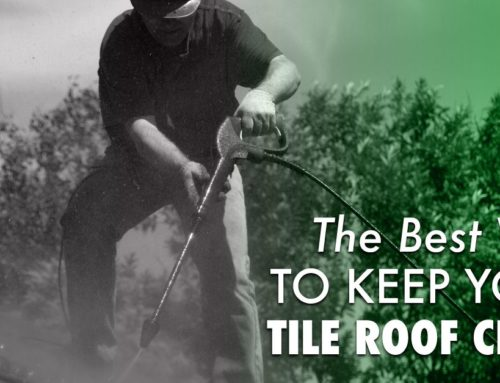 The Best Way To Keep Your Tile Roof Clean